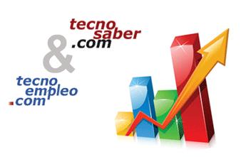 Tecnosaber Tecnoempleo en cifras 2013