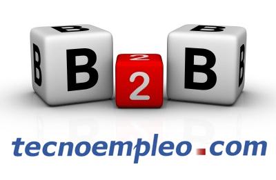 Tecnoempleo B2B